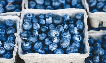 Easy Blueberry Cobbler RECIPE by Bill Melton