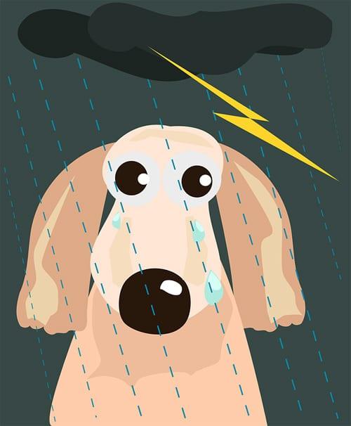 Doggie by Dakota James
