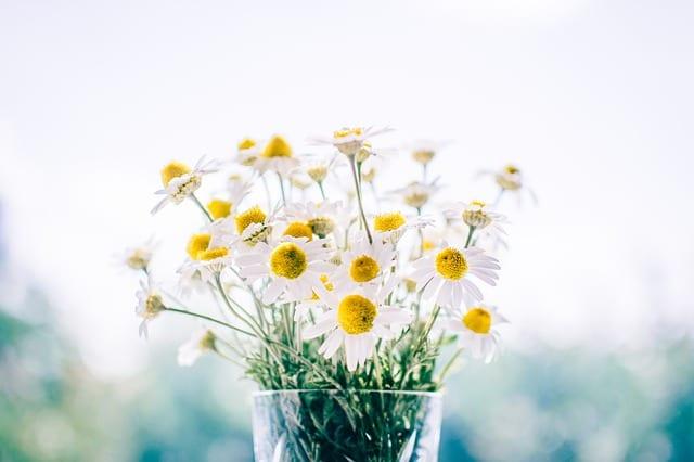 Anniversary Flowers by Robert Rickelman