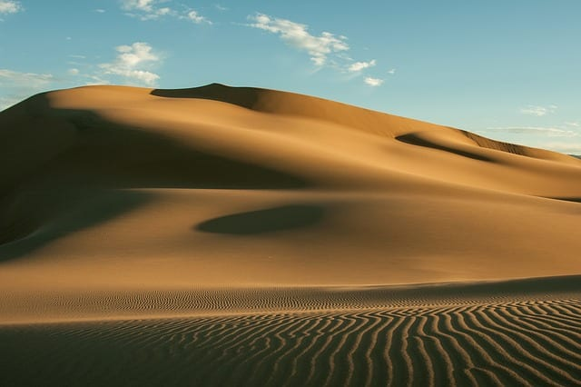 Treacherous Dune by Megha Sood