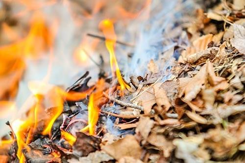 Burning by Joanna M. Weston